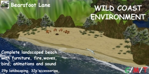 Bearsfoot Beaches WILD COAST ENVIRONMENT (boxed)PIC
