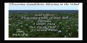 -SE- Pack of Flowering Blue BellsPIC